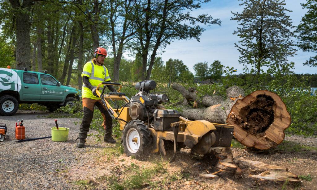 professionell stubbfräsning på Värmdö och i stockholm